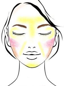 卵形(標準型)の顔型メイクのハイライトを表した図