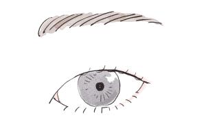 一重でも目を大きくみせるアイメイク方法:一重のイラスト