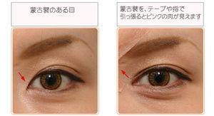 日本人の特有の蒙古ひだの目の形
