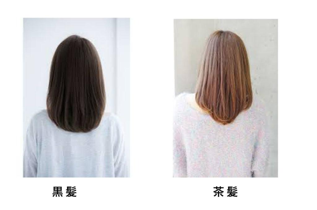 黒髪女性と茶髪女性の比較