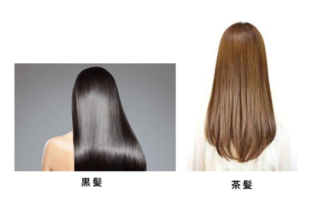 ロングの黒髪と茶髪女性 ロングの印象