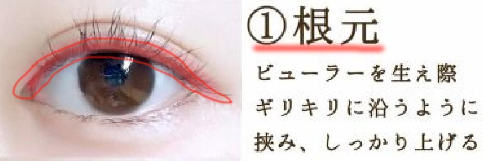 目の目元の写真(ビューラーをする時に注意する点を書いた写真)