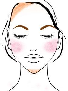 顔の形(輪郭)別メイクの図 逆三角形の顔のメイク方法(眉毛の書き方)
