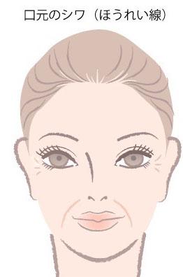 シワとほうれい線の顔のイラスト