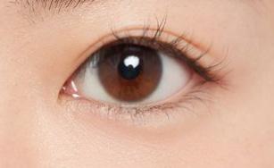 丸い目の目元