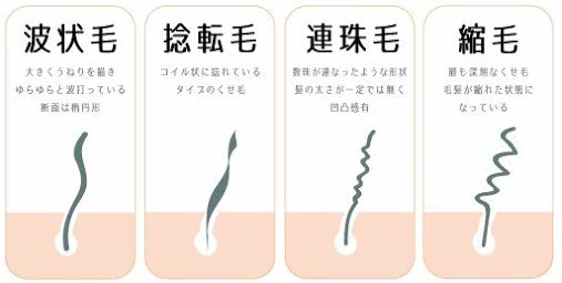 くせ毛のイラスト